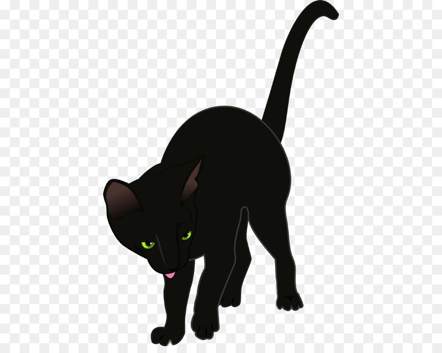 Descarga gratuita de Gato, Gatito, Camiseta Imágen de Png