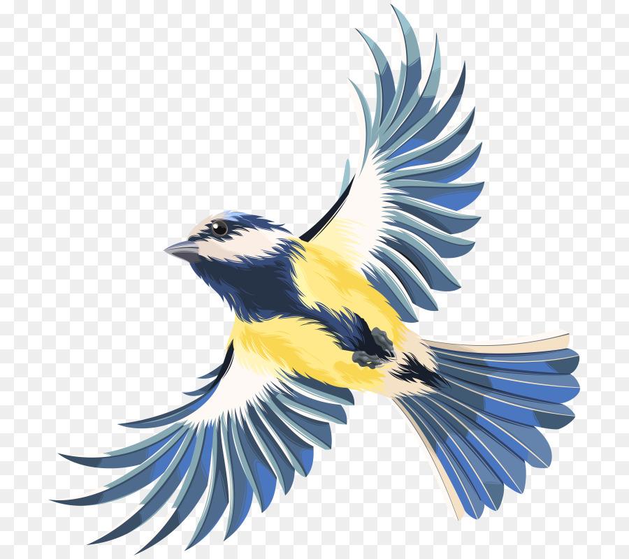 Descarga gratuita de Aves, Dibujo, Las Aves En Vuelo Imágen de Png