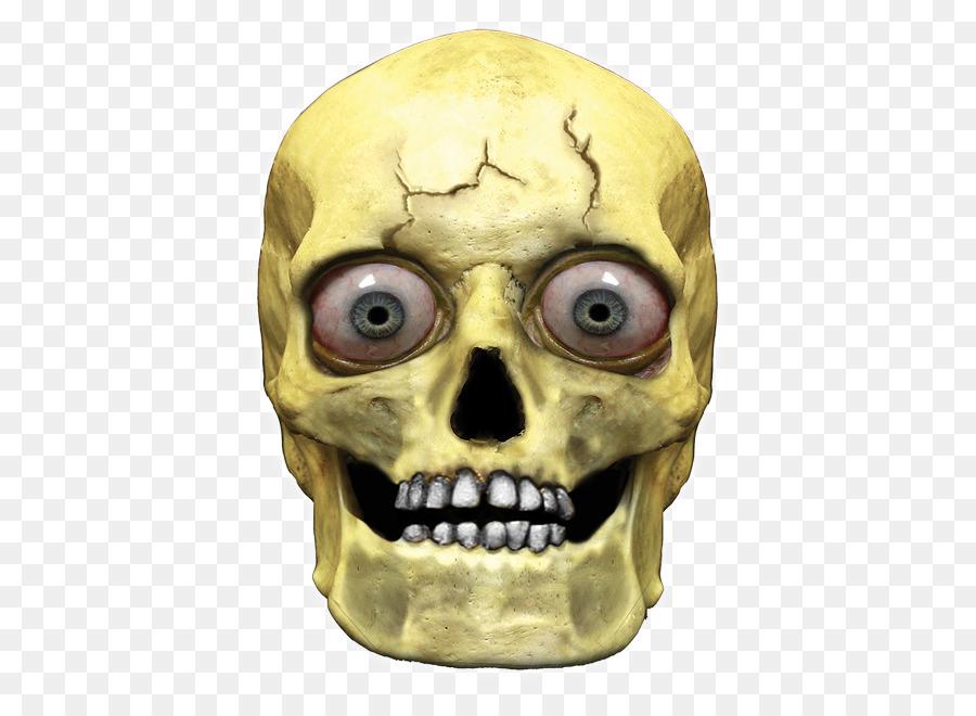 Descarga gratuita de La Cabeza, Cráneo Humano Simbolismo, Esqueleto Imágen de Png