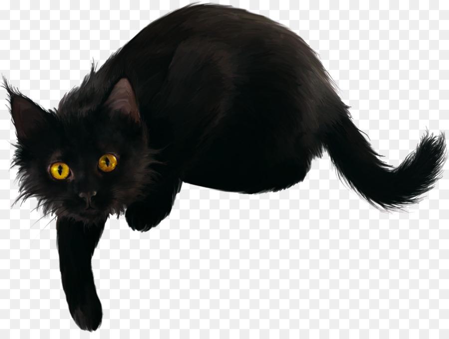 Descarga gratuita de Gato Negro, Bombay Gato, Gato Doméstico De Pelo Corto Imágen de Png