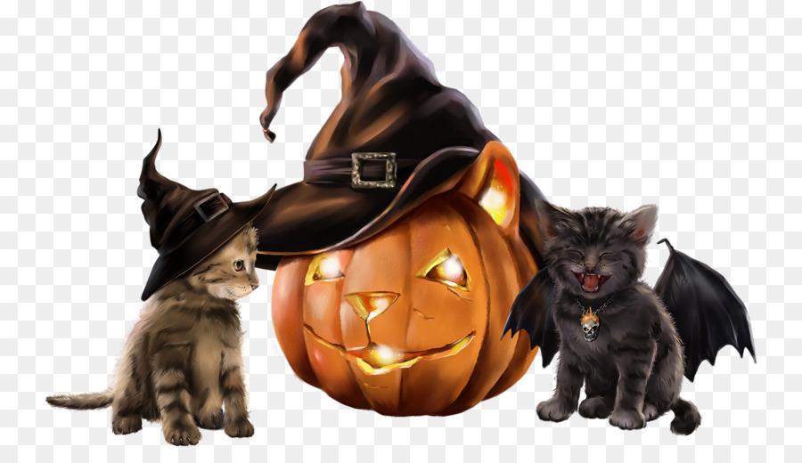 Descarga gratuita de Bigotes, Gatito, Gato Negro Imágen de Png