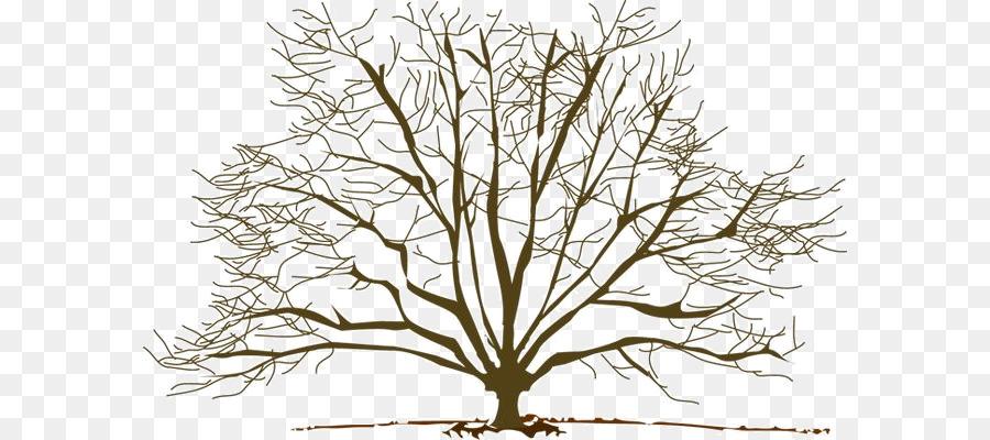 Arbol Rama Otono Imagen Png Imagen Transparente Descarga Gratuita