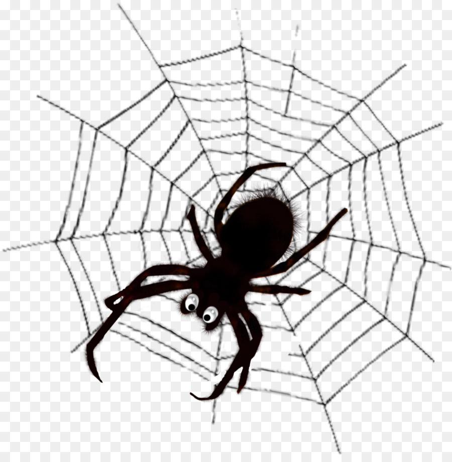 Descarga gratuita de Arañas De La Viuda, Tela De Araña, Araña Imágen de Png