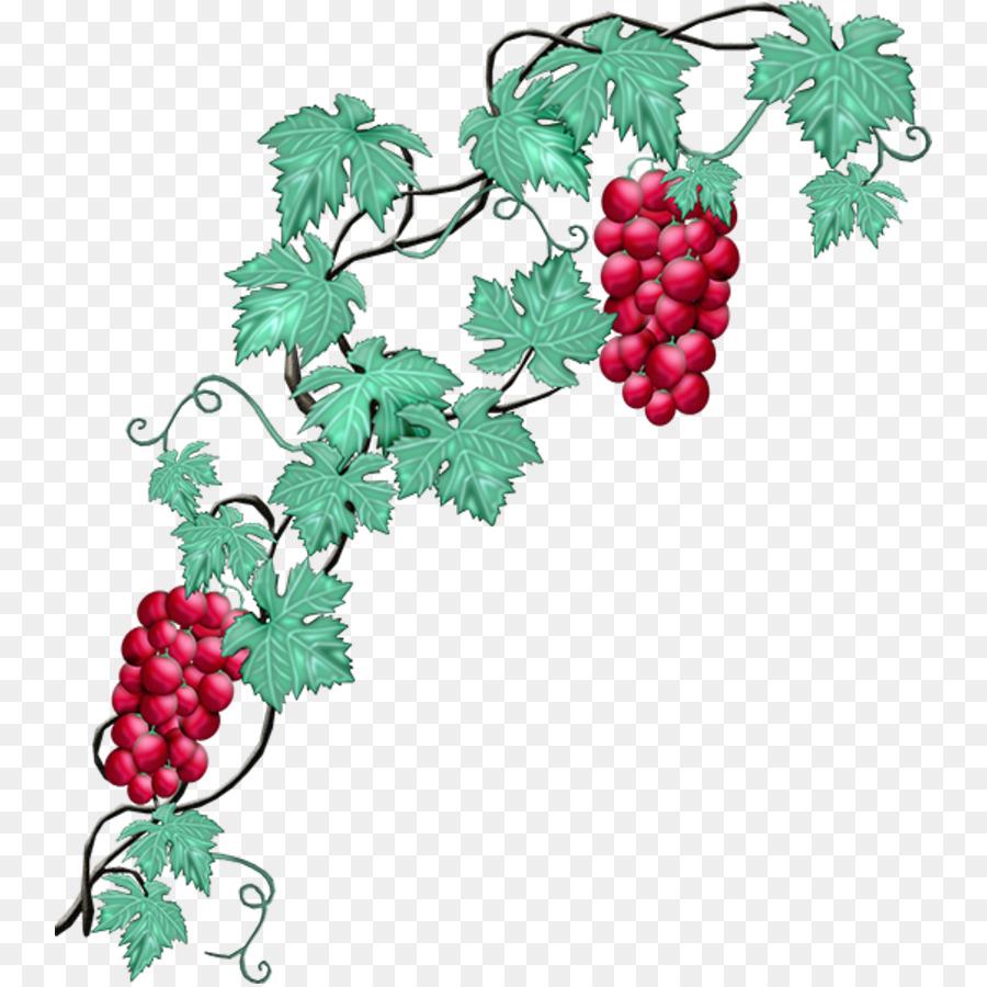 Descarga gratuita de Uva, Común De La Uva De La Vid, Vino Imágen de Png