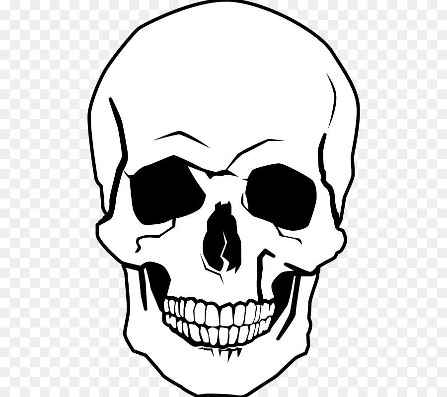 Dibujo Cráneo Humano Libro Para Colorear Imagen Png Imagen