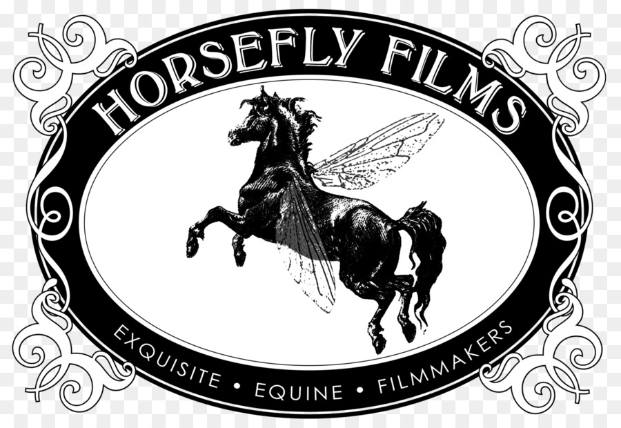 Descarga gratuita de Camarillo Caballo Blanco, Equus Festival De Cine De, Camarillo imágenes PNG