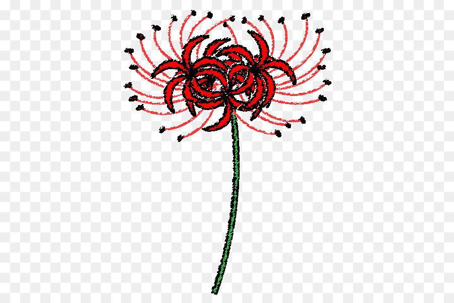 Descarga gratuita de Diseño Floral, Araña Roja Lily, Artes Visuales Imágen de Png