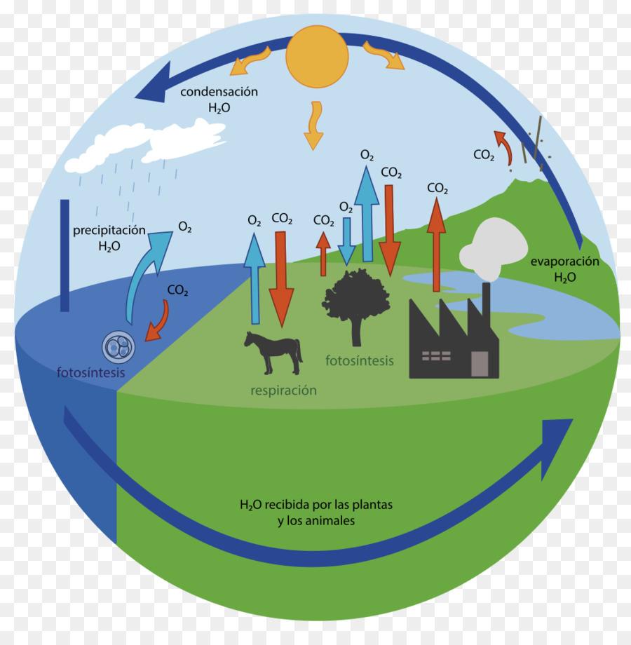 Alternativas de valorização do Dióxido de Carbono