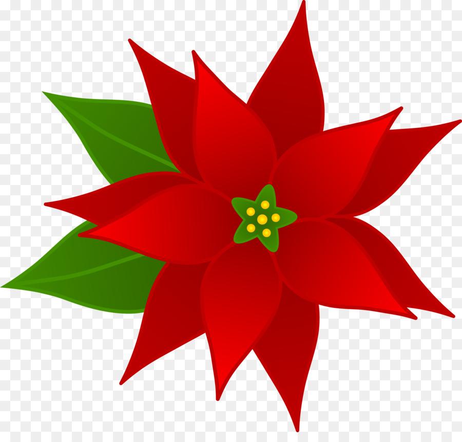 Descarga gratuita de Clip Art De Navidad, La Flor De Pascua, Christmas Day Imágen de Png