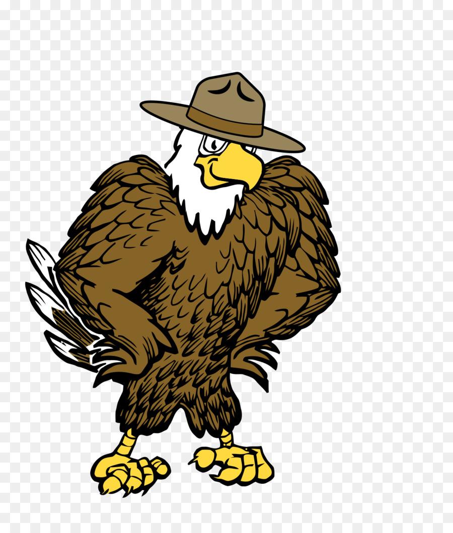 Descarga gratuita de águila Calva, águila, Golden Eagle Imágen de Png