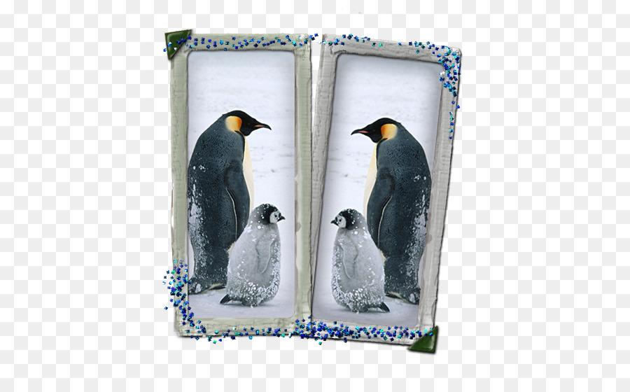 Descarga gratuita de Pingüino, Iphone X, El Iphone 6 Plus imágenes PNG