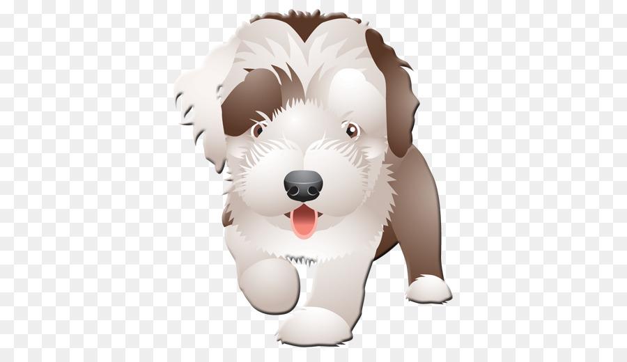 Descarga gratuita de Schnoodle, Cachorro, Papel imágenes PNG