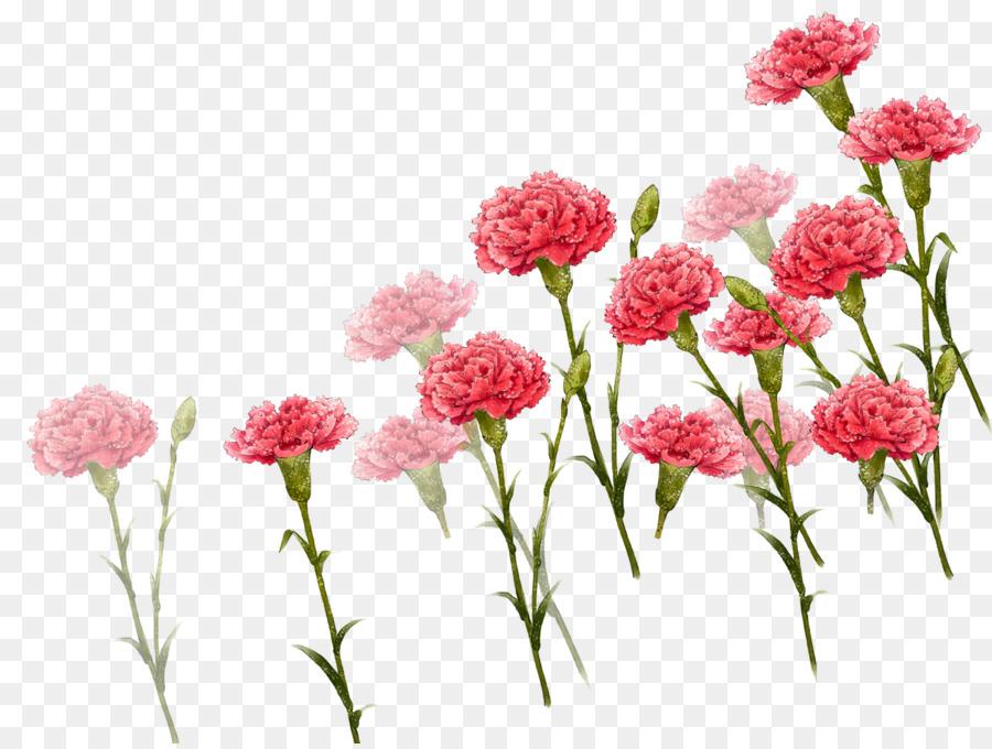 Descarga gratuita de Clavel, El Día De Las Madres, Descargar imágenes PNG