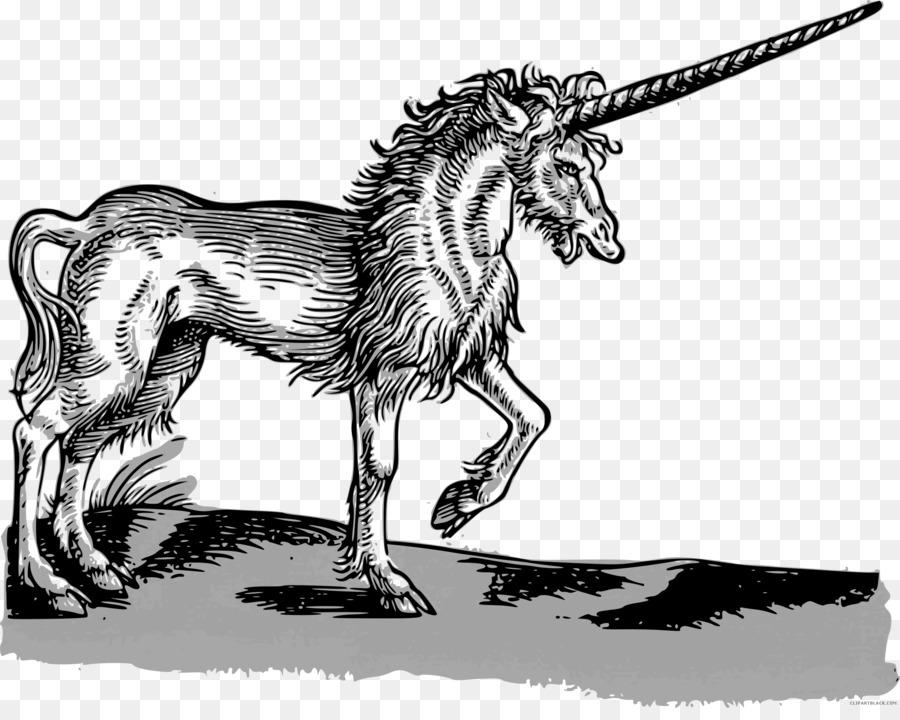Descarga gratuita de Historia Animalium, Renacimiento, Siglo 16 imágenes PNG