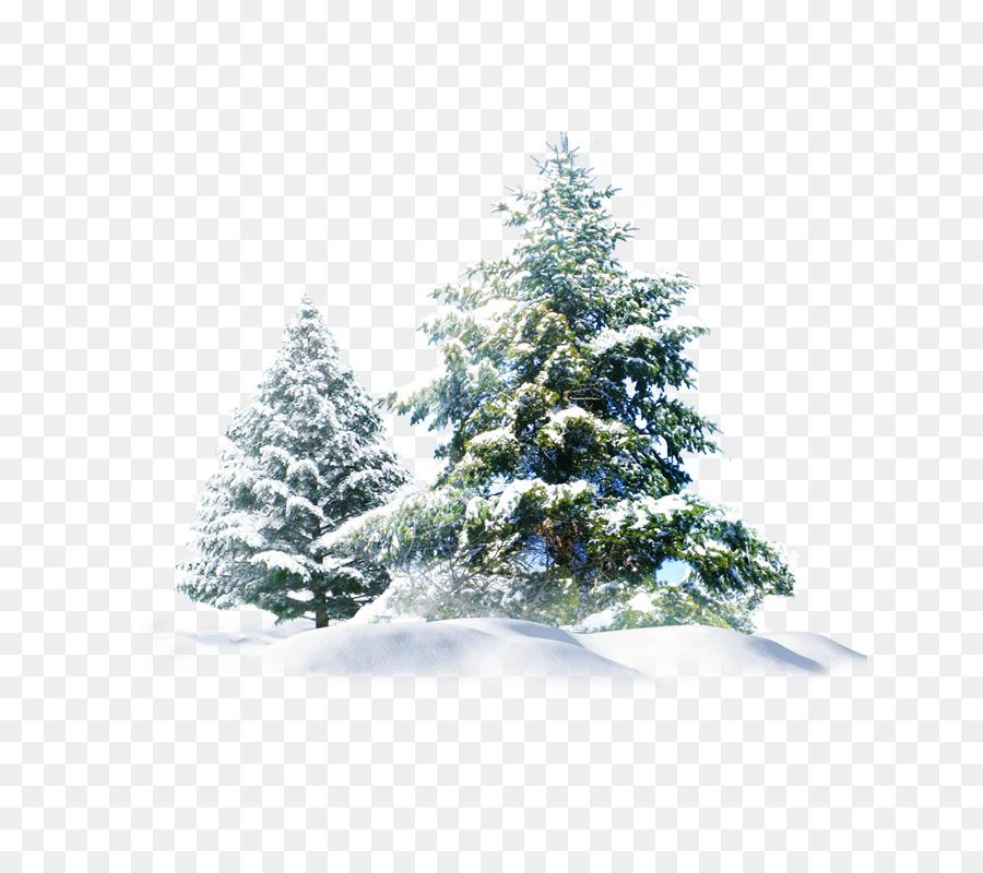 Descarga gratuita de Christmas Day, La Nieve, árbol De Navidad Imágen de Png
