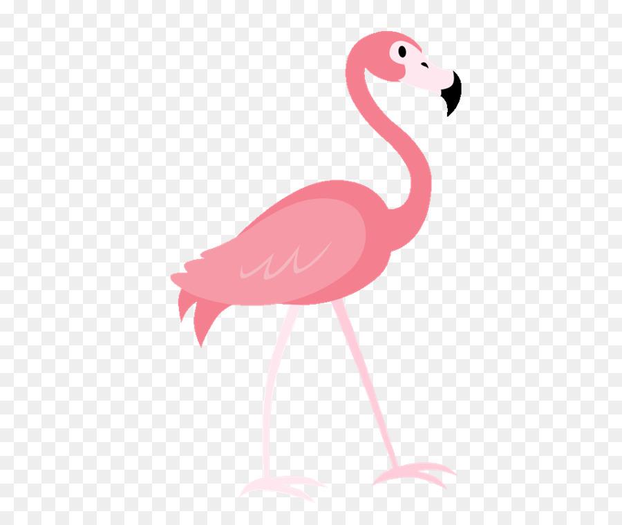 Descarga gratuita de Flamingo, Una Fotografía De Stock, Dibujo Imágen de Png