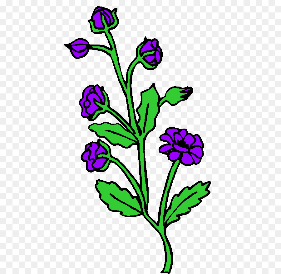 Descarga gratuita de Las Plantas, Diseño Floral, Las Flores Cortadas imágenes PNG