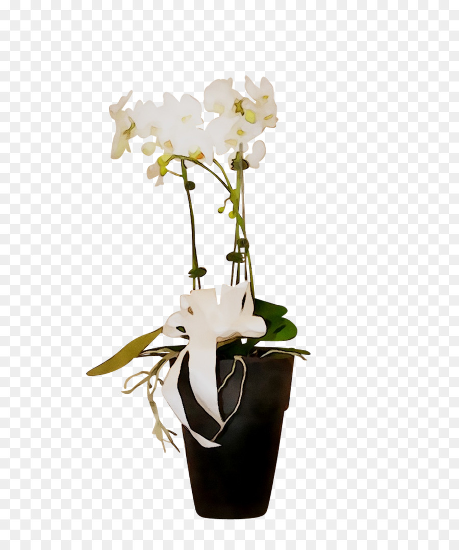 Descarga gratuita de La Polilla De Las Orquídeas, Diseño Floral, Florero imágenes PNG