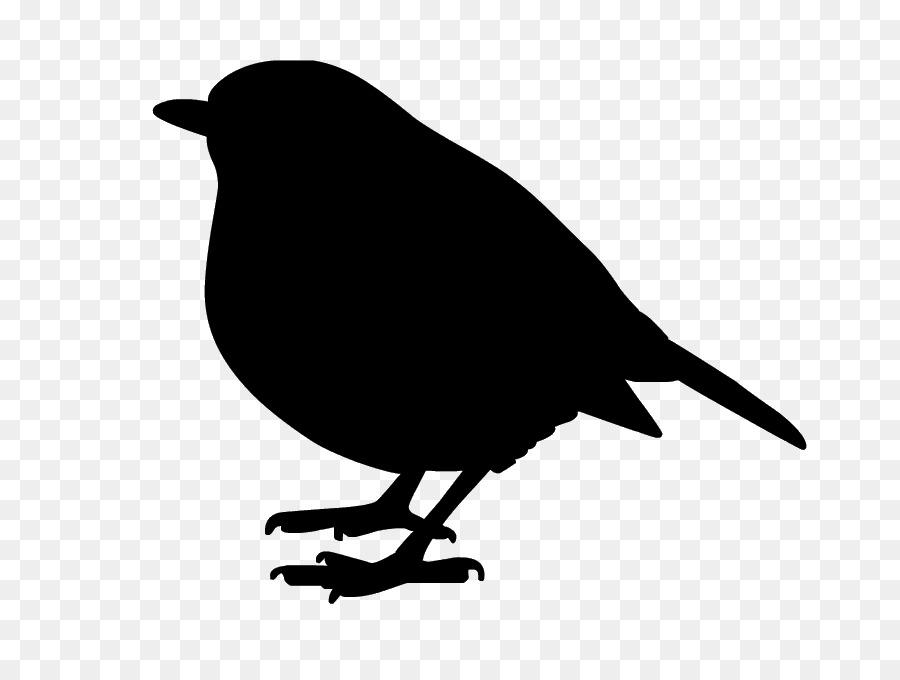 Descarga gratuita de Aves, Común Raven, Arte imágenes PNG