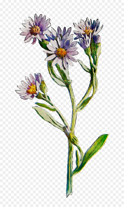 Descarga gratuita de Las Flores Cortadas, Tallo De La Planta, Planta Anual imágenes PNG