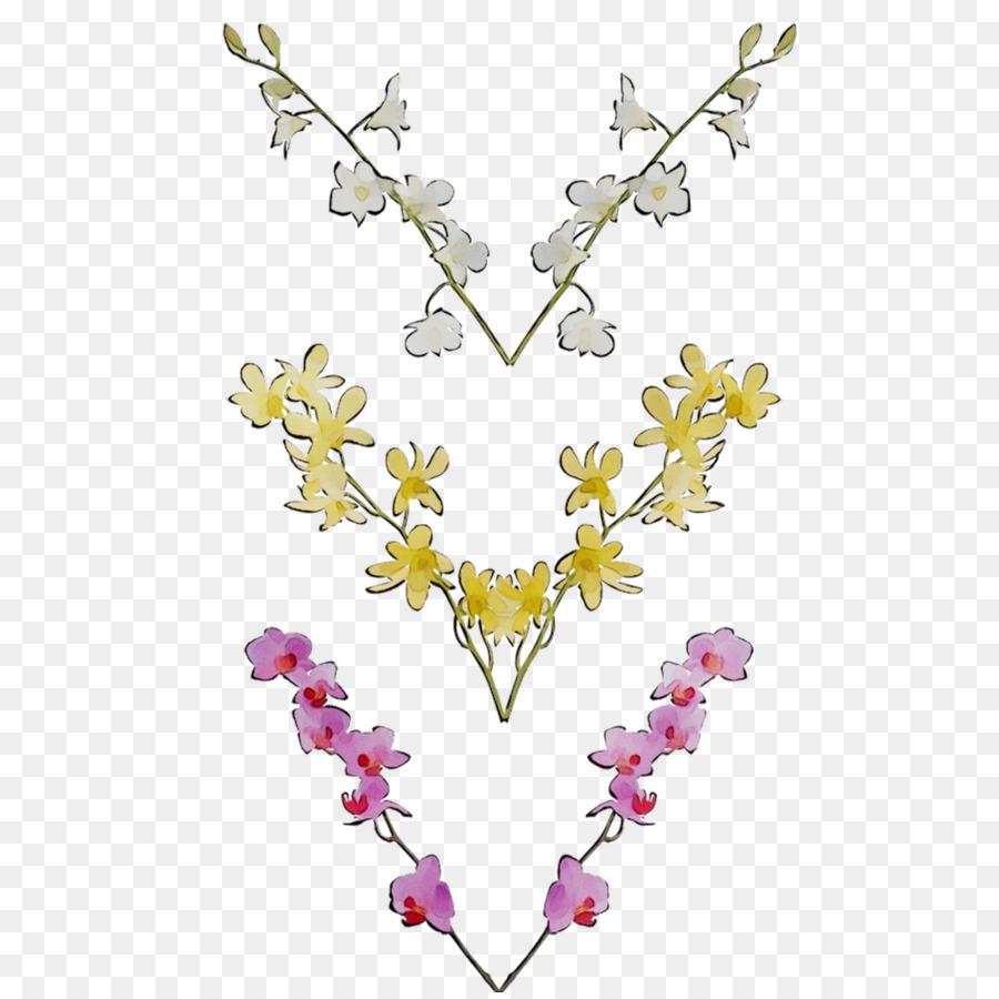 Descarga gratuita de Las Orquídeas, Orquídeas Dendrobium, Cooktown Orquídea Imágen de Png