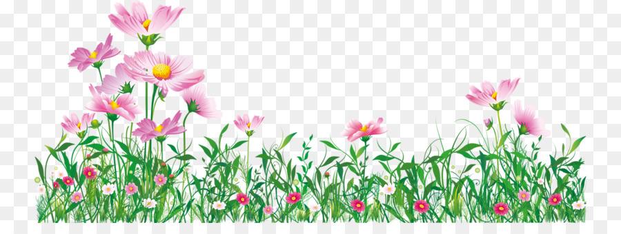 Descarga gratuita de Tulip, Flor, Jardín Imágen de Png