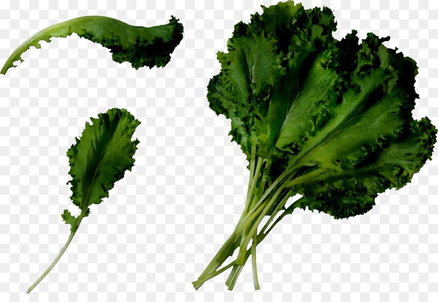 Descarga gratuita de Cilantro, De Verduras De Primavera, La Col Rizada imágenes PNG