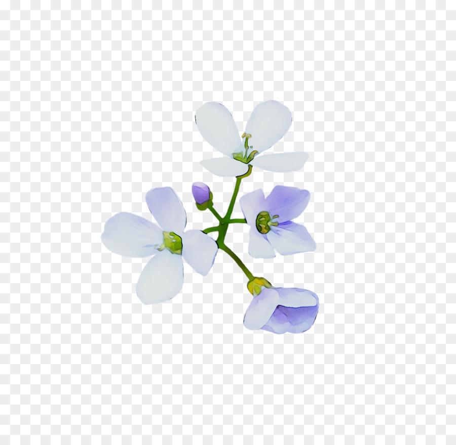Descarga gratuita de Fondo De Escritorio, La Floración De La Planta, Las Plantas imágenes PNG
