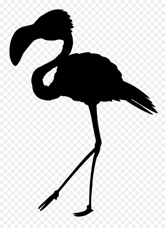 Descarga gratuita de Los Cisnes, Ganso, Pico Imágen de Png