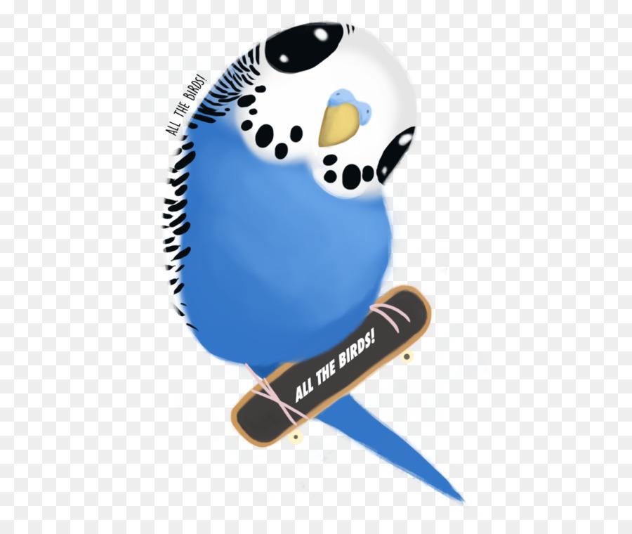 Descarga gratuita de Budgericar, Las Palomas Y Las Palomas, Aves Imágen de Png