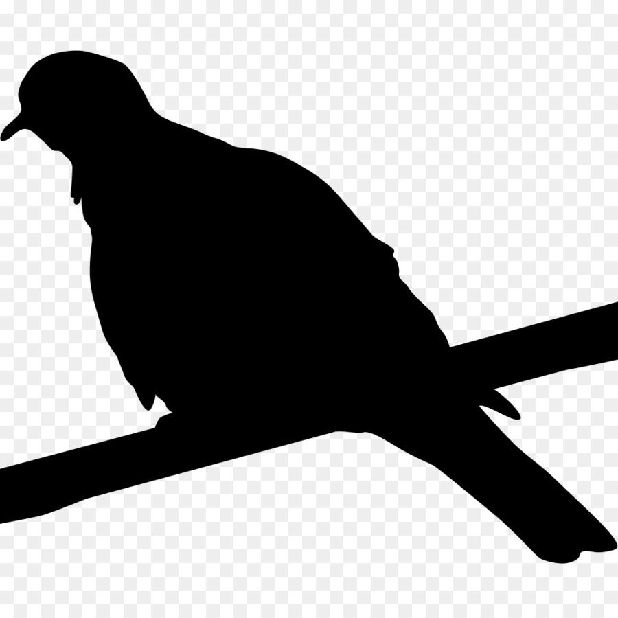 Descarga gratuita de Laboratorio De Ornitología De Cornell, Aves, Las Aves De América Del Norte Imágen de Png