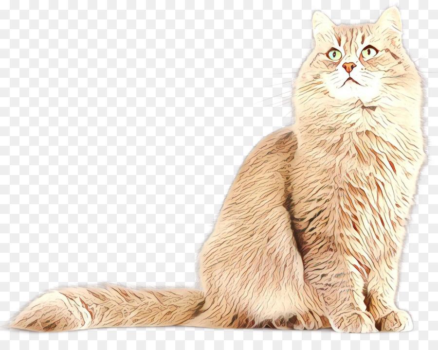 Descarga gratuita de Gato Persa, Asiático Semilonghair, Nebelung imágenes PNG