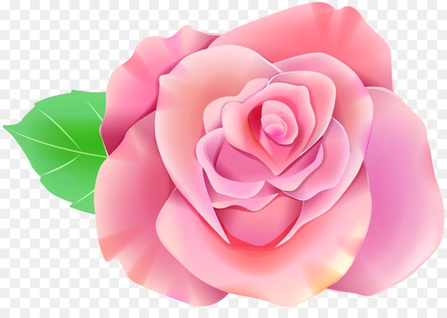 Descarga gratuita de Rosa, Fondo De Escritorio, Rosa Azul imágenes PNG