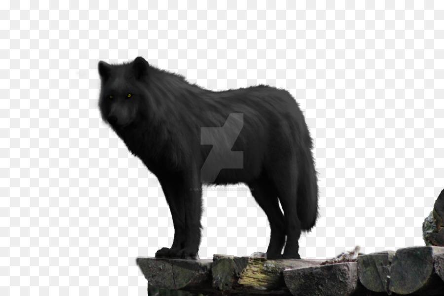 Descarga gratuita de Perro, Lobo Negro, El Lobo ártico imágenes PNG