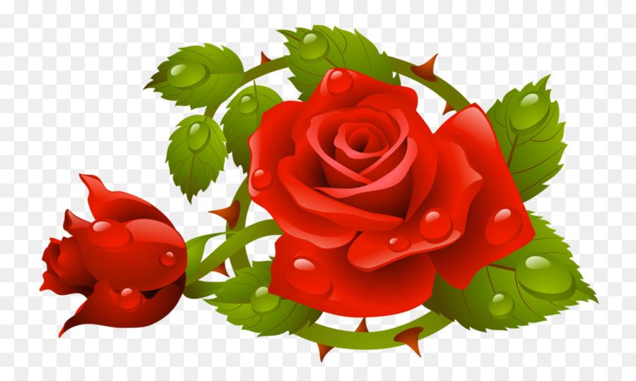 Descarga gratuita de Rosa, Una Fotografía De Stock, Royaltyfree imágenes PNG