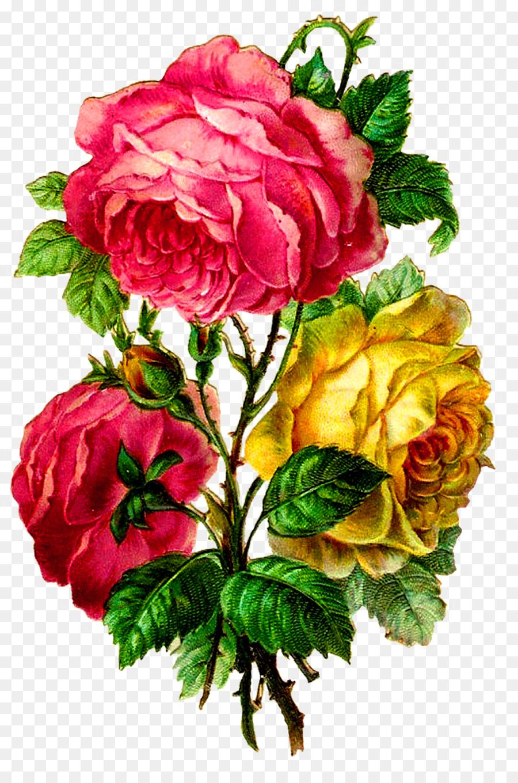 Descarga gratuita de Ramo De Flores, Flor, Col Rosa Imágen de Png