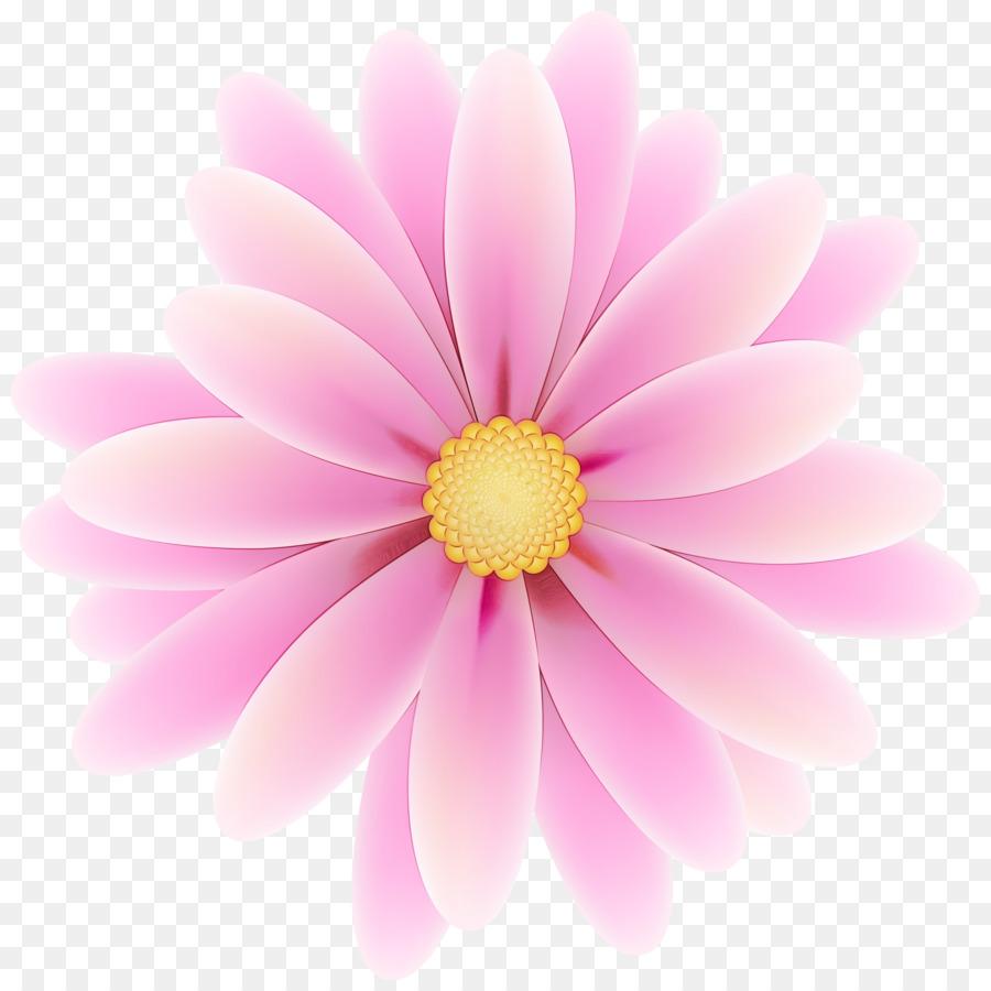 Descarga gratuita de Crisantemo, Margarita Margarita, Silueta imágenes PNG