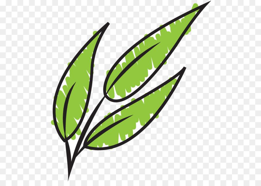 Descarga gratuita de Hoja, Tallo De La Planta, Línea imágenes PNG