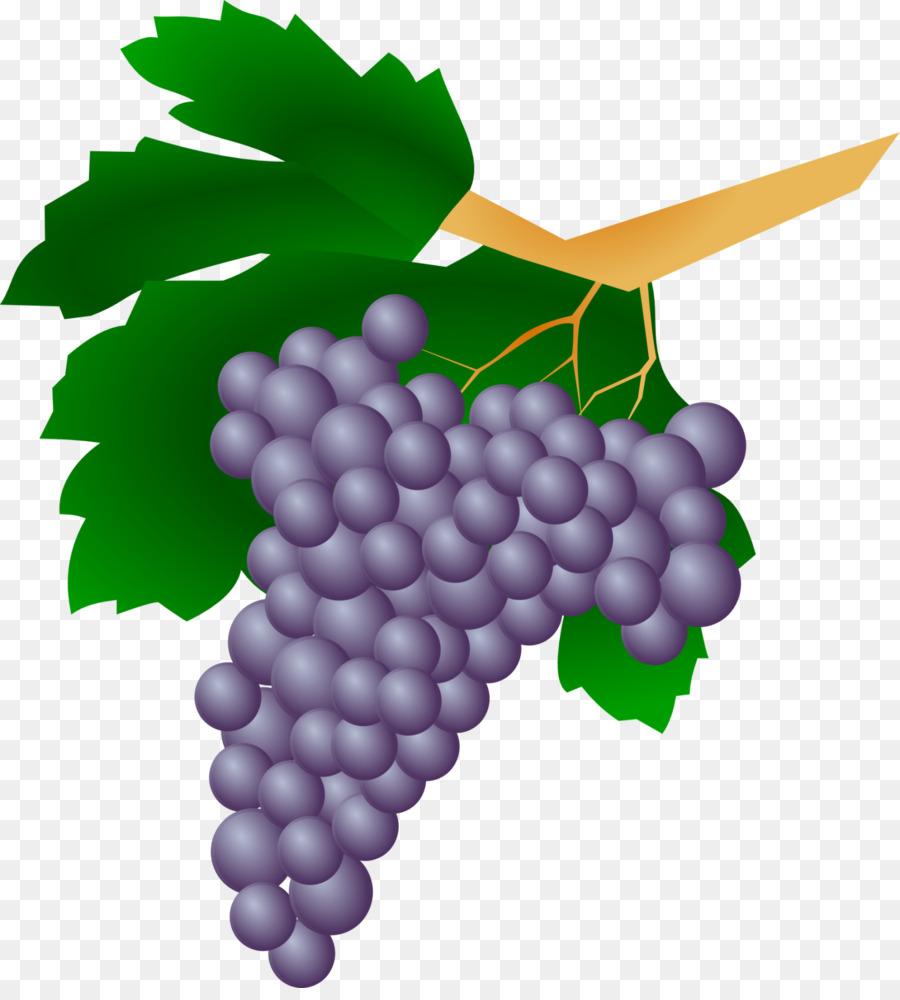 Descarga gratuita de Común De La Uva De La Vid, Sultana, Vino Imágen de Png