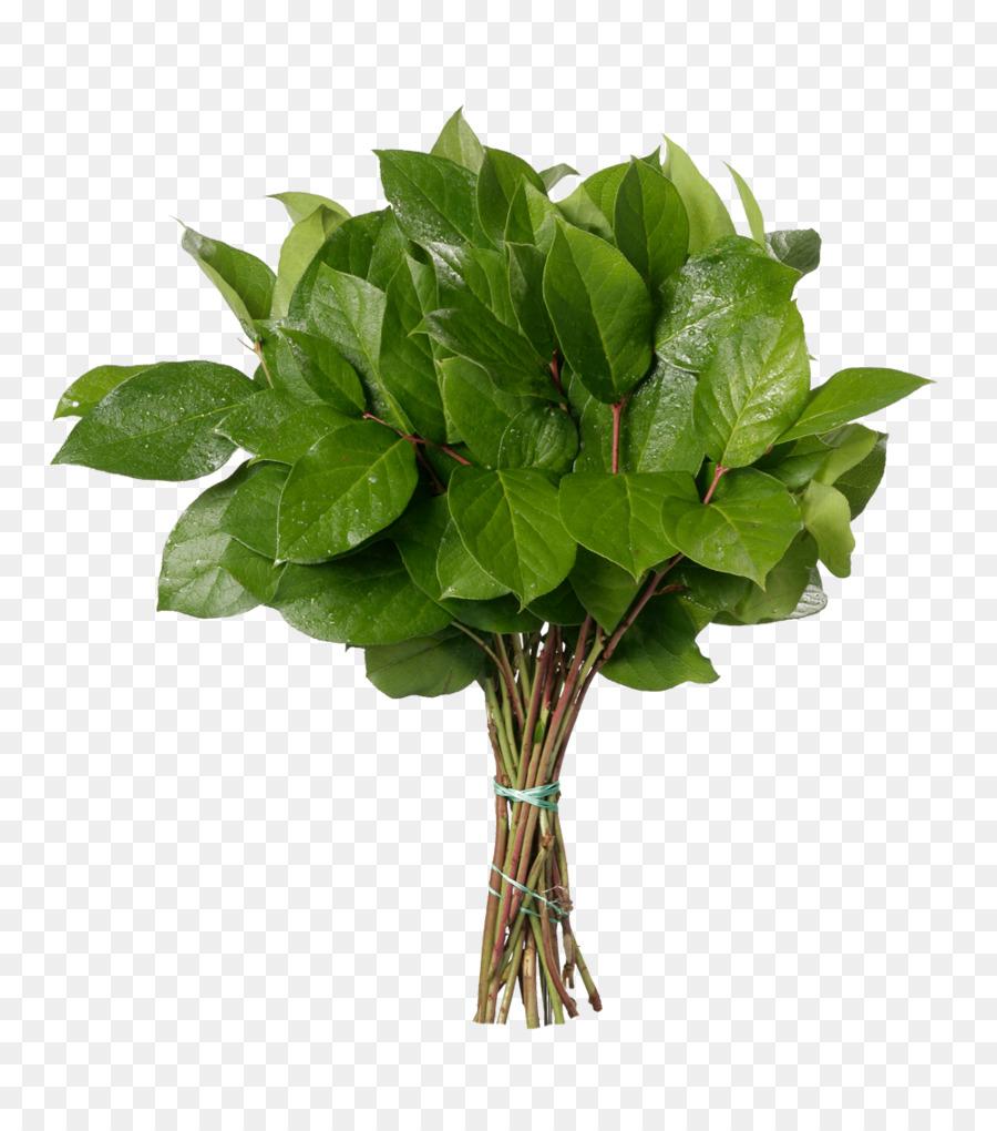 Descarga gratuita de Ramo De Flores, Shallon, Flor imágenes PNG