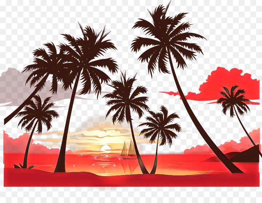Descarga gratuita de Los árboles De Palma, Fondo De Escritorio, Atardecer Imágen de Png