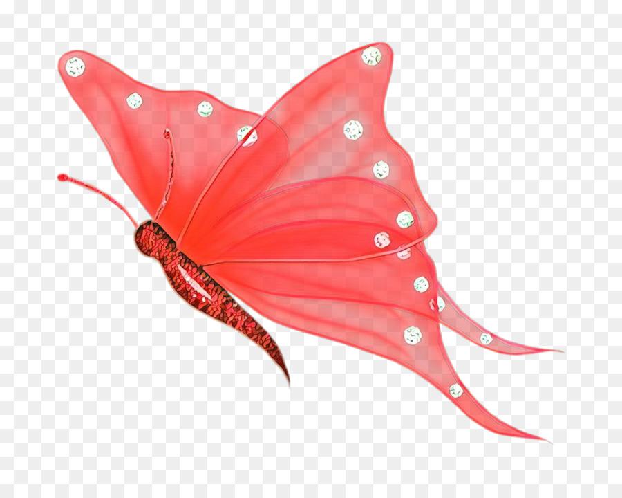 Descarga gratuita de Mariposa, Los Insectos, Fondo De Escritorio Imágen de Png