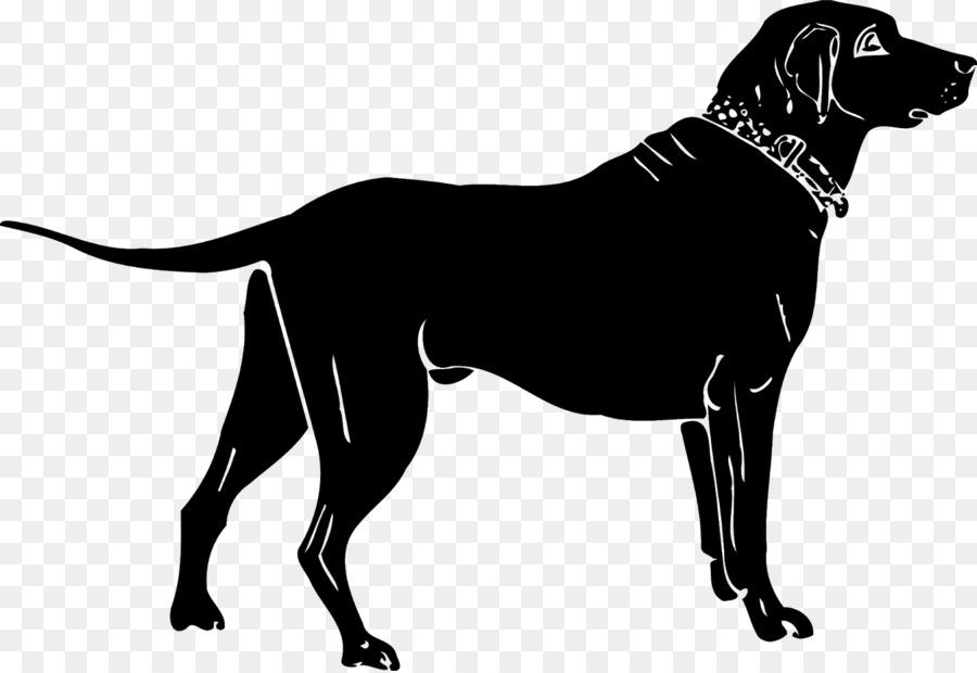 Descarga gratuita de Labrador Retriever, Golden Retriever, Retriever imágenes PNG