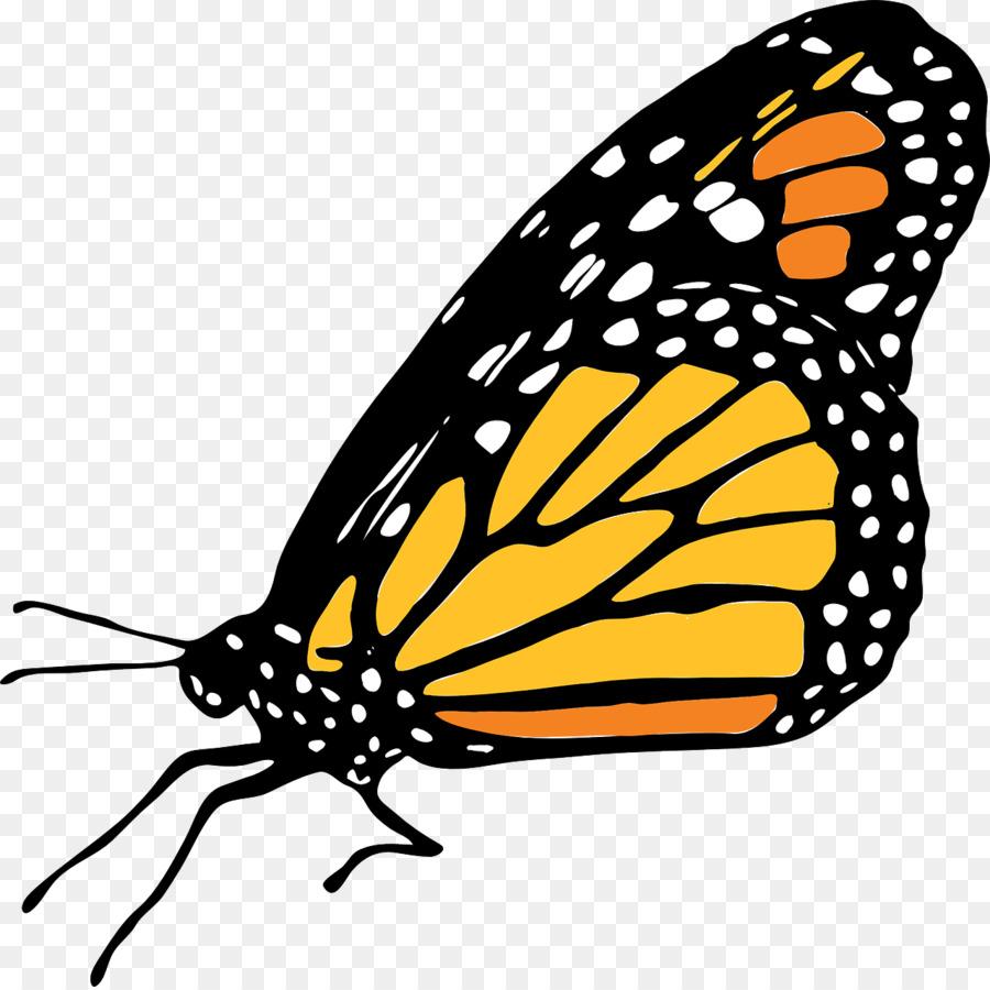 Descarga gratuita de Mariposa, La Mariposa Monarca, Los Insectos imágenes PNG