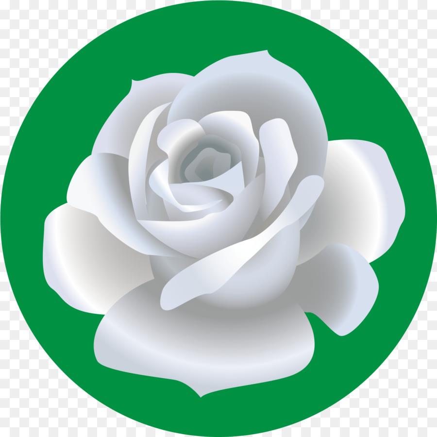 Descarga gratuita de Las Rosas De Jardín, Dibujo, Flor Imágen de Png