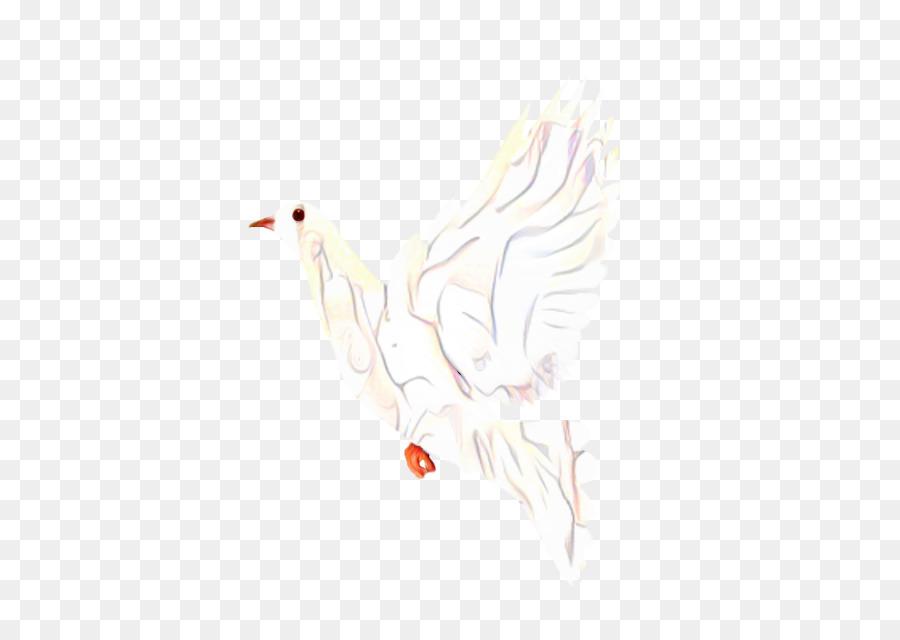 Descarga gratuita de Pollo, Dibujo, M02csf Imágen de Png