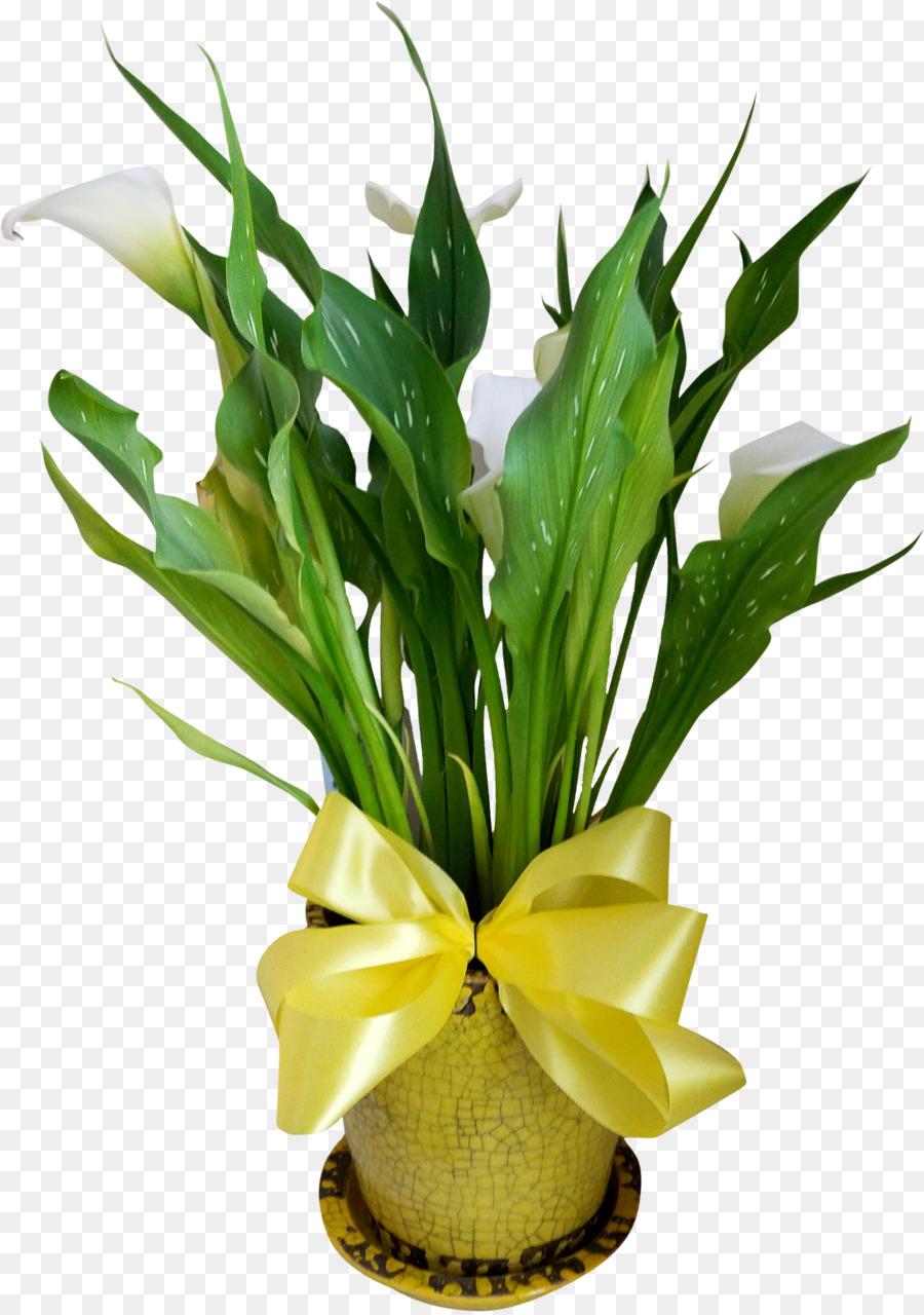 Descarga gratuita de Diseño Floral, Las Flores Cortadas, Flor Imágen de Png