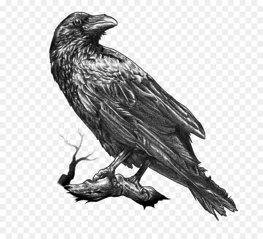 Descarga gratuita de American Cuervo, Dibujo, Torre imágenes PNG