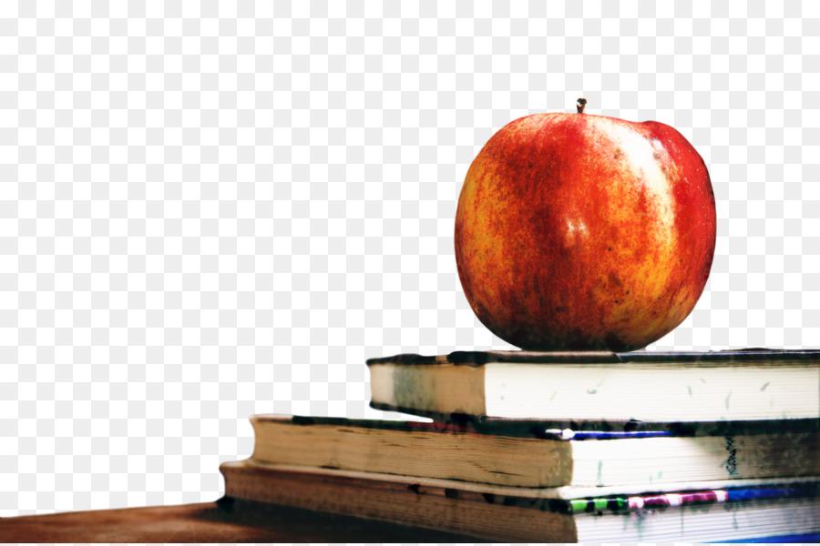 Descarga gratuita de La Escuela, Simcoe Muskoka Católica De La Junta Directiva Del Distrito Escolar, La Filosofía imágenes PNG