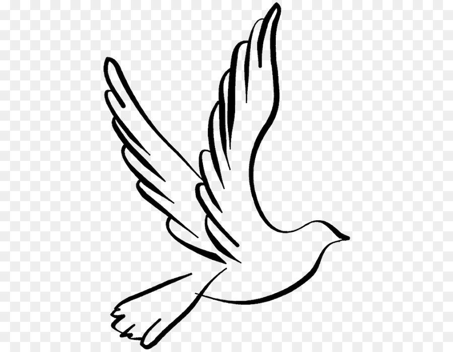 Descarga gratuita de Las Palomas Y Las Palomas, Dibujo, Aves Imágen de Png